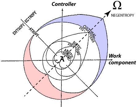 Haskell coaction compass