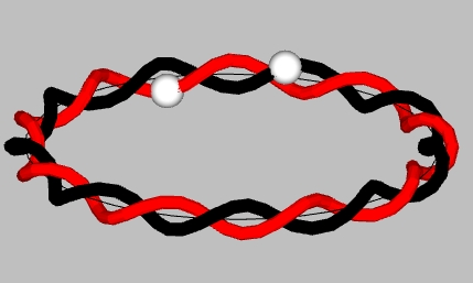 Pseudo-counter-coil with helices out of phase and spheres travel in opposite directions)