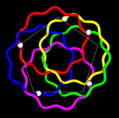 Animation of possible dynamics of toroidal 5 coil configuration